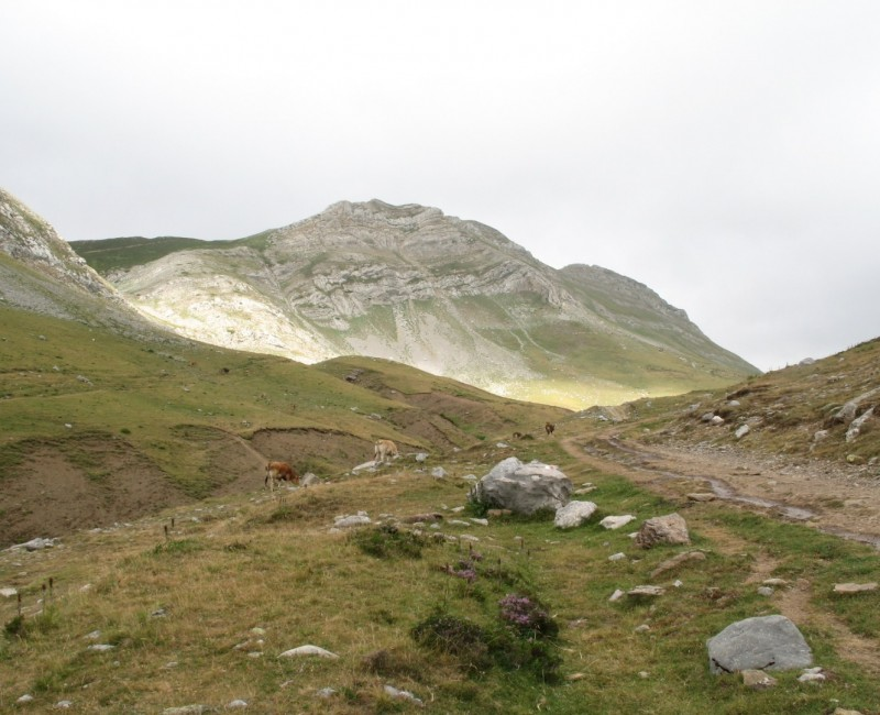 valle de las partidas (León)